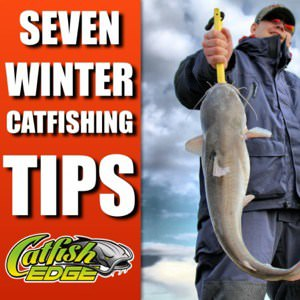 Seven Winter Catfishing Tips To Catch More Catfish