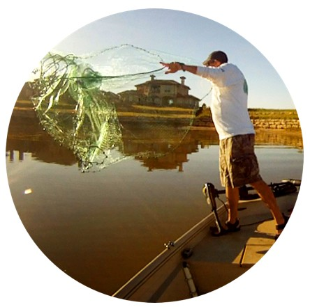 Catching Shad For Catfish Bait