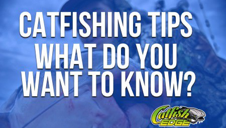 Catfishing Tips: How Can YOU Catch More Or Bigger Catfish?