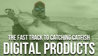 How To Catch Catfish Products