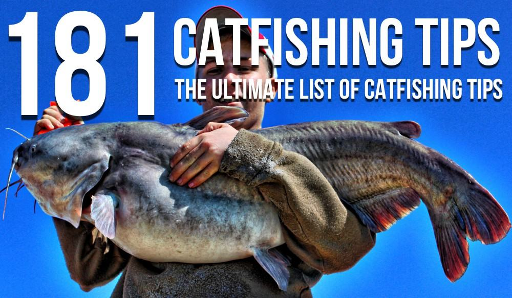 pin best flathead catfish bait cake on pinterest