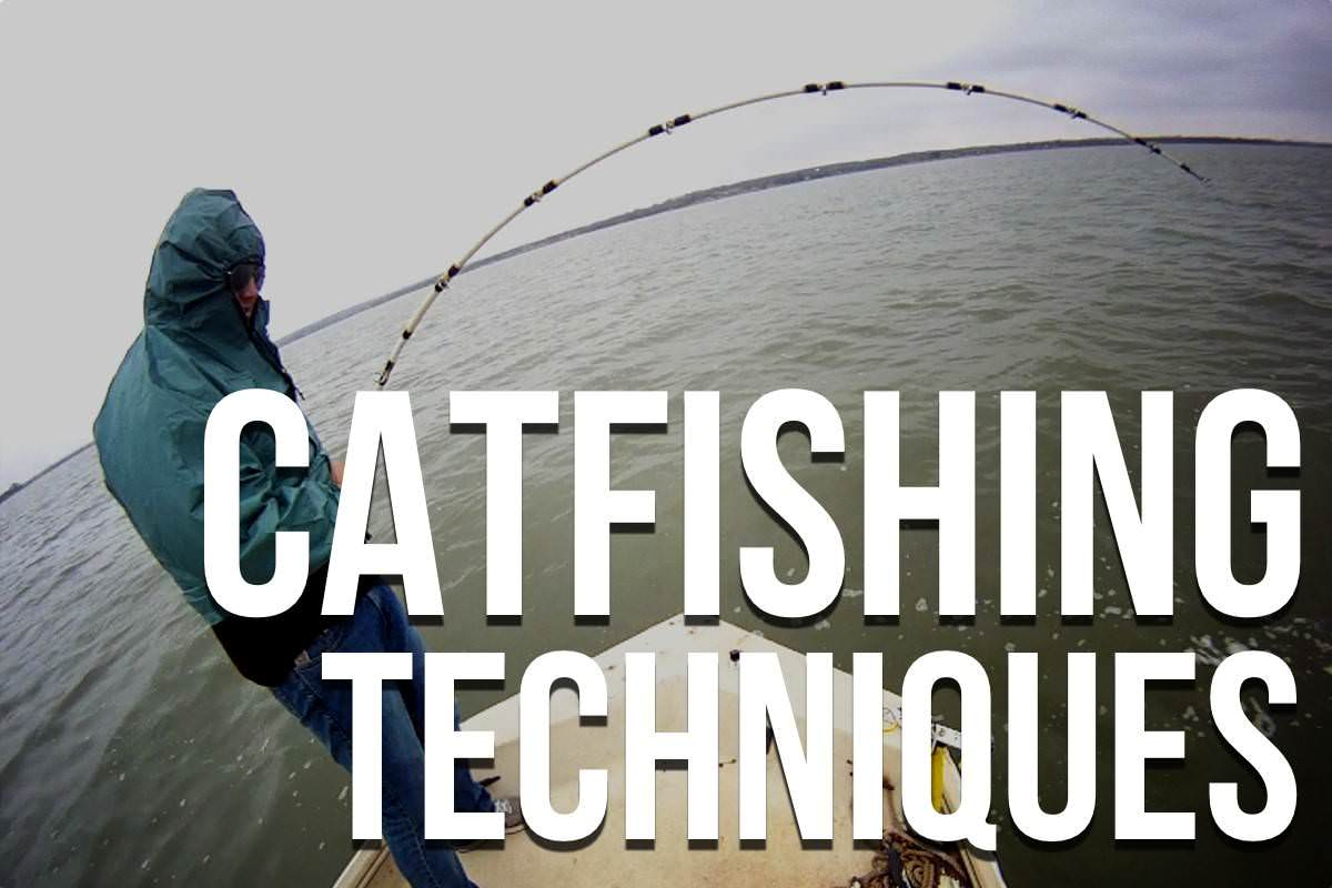 Catfishing Techniques