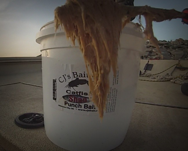CJ's Catfish Punch Bait