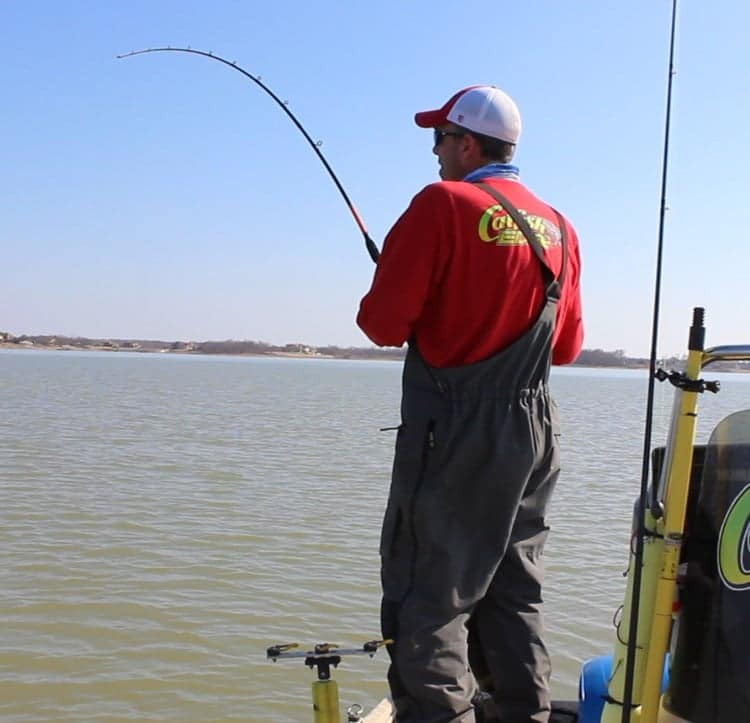 the ultimate guide to catfish rods, Fishing Rod