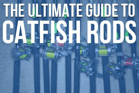 Catfish Rods: The Ultimate Guide To Catfish Rods