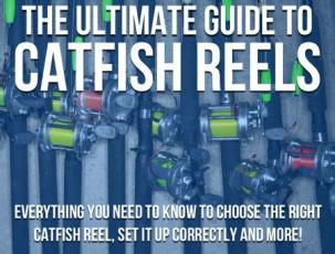 Ultimate Guide To Catfish Reels