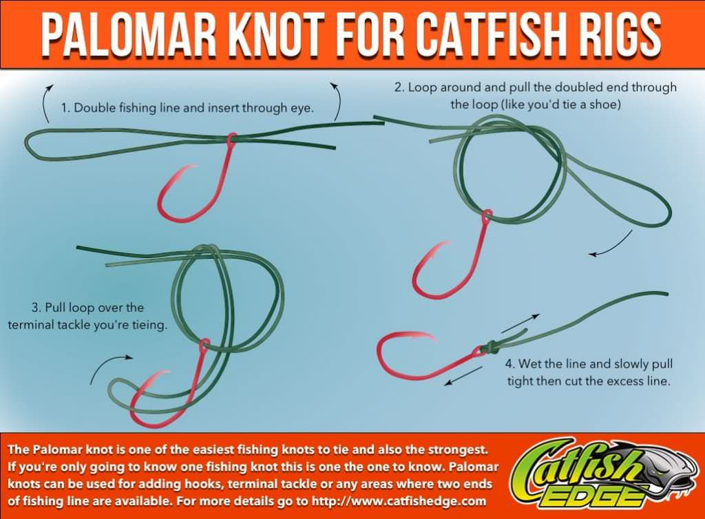 Four fishing knots every catfish angler should know for Fishing swivel knot