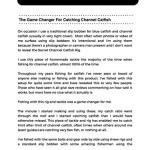 Secret Catfish Rig Preview 1