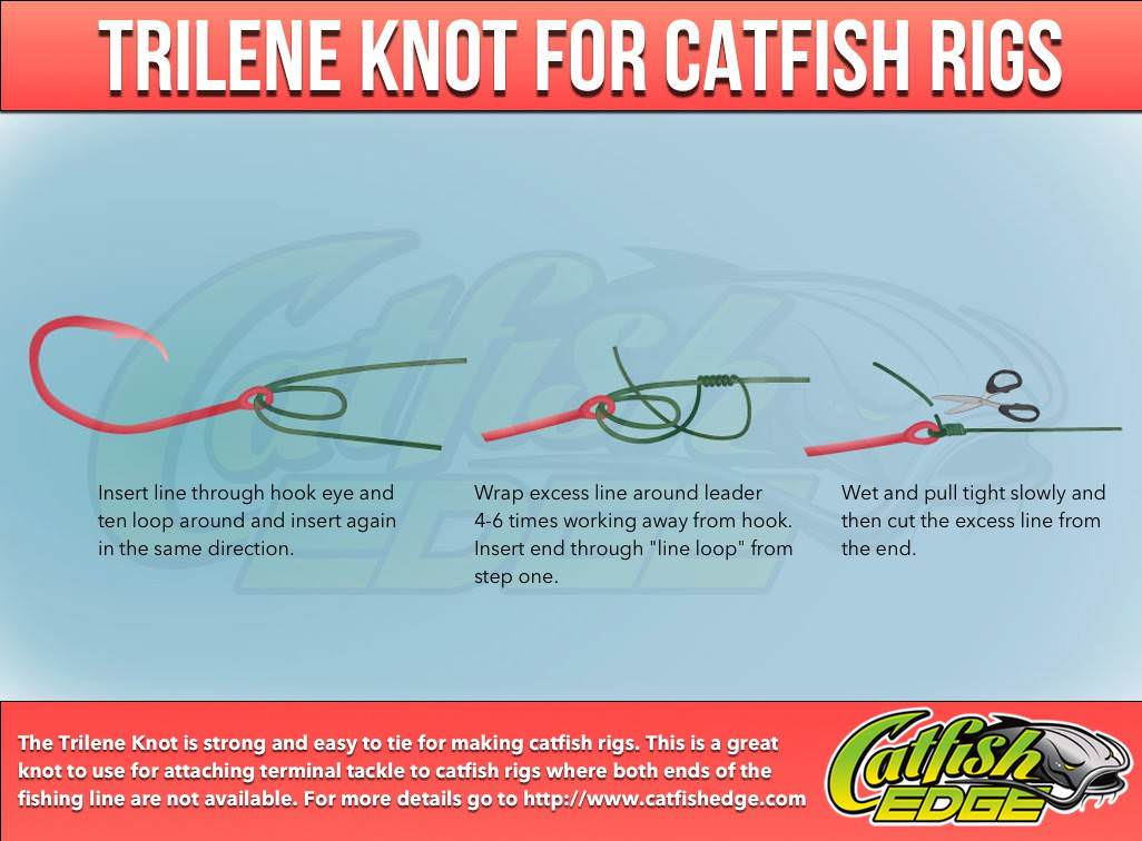 Four fishing knots every catfish angler should know for The fishing line