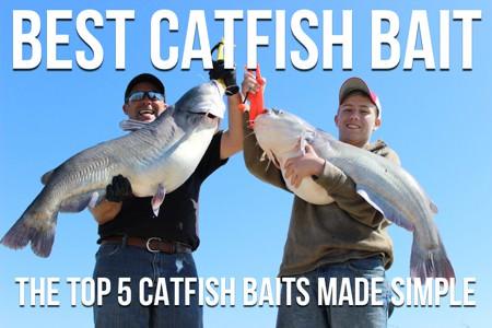 Best Catfish Bait: The Top 5 Catfish Baits Made Simple