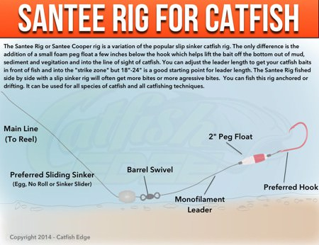 Santee Cooper Rig For Catfish: A Catfishing Essential