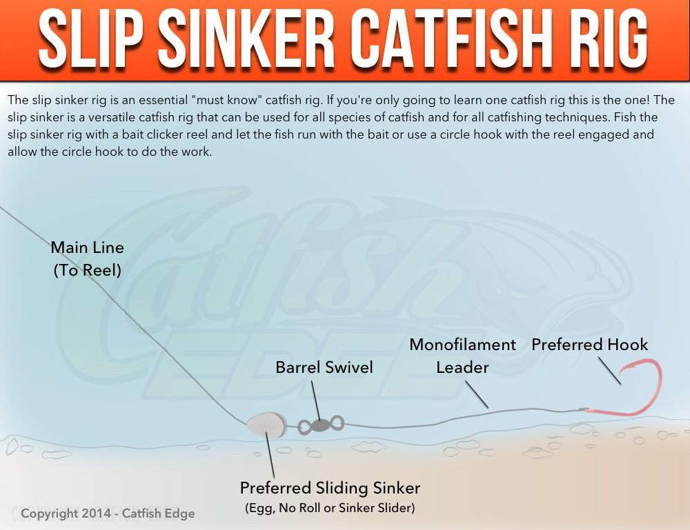 Slip sinker rig the one must know catfish rig for A rig fishing