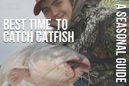 The best time to catch catfish seasonal guide for When is the best time to fish