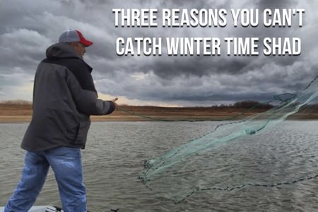Three Reasons You Can't Catch Winter Time Shad