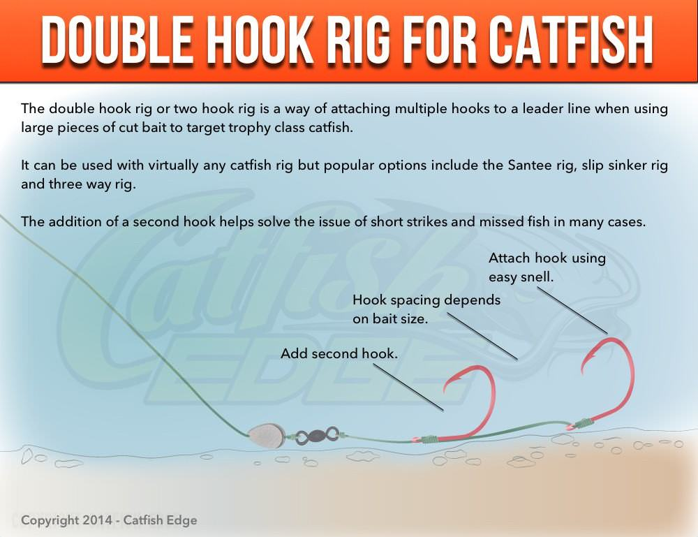 Double hook rig for catfish big baits monster catfish for Catfish rigs for river fishing