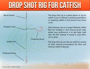 Drop Shot Rig Catfish