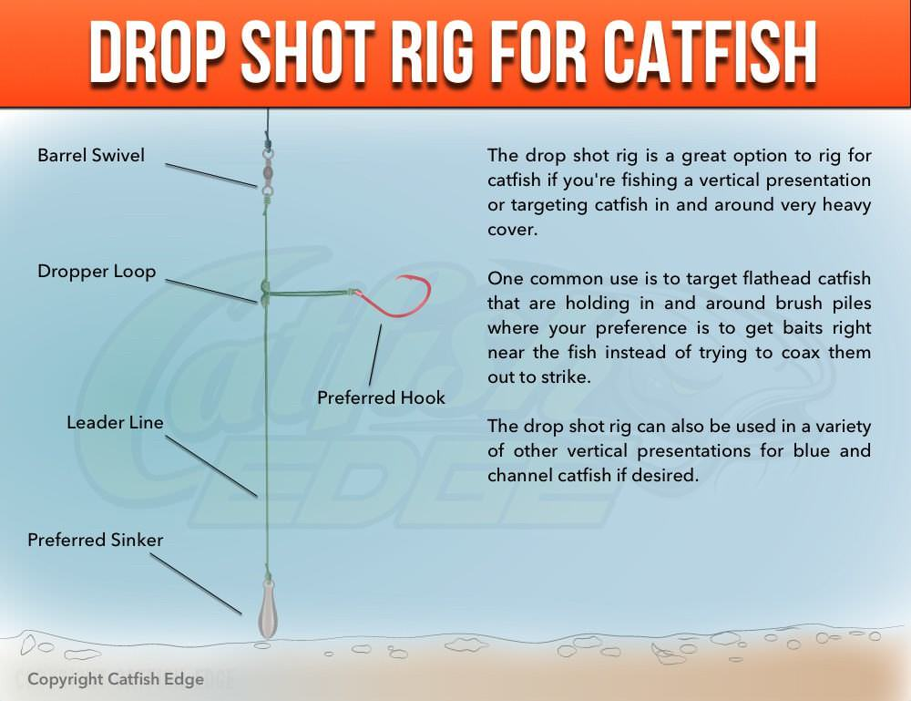 Drop shot rig for heavy cover catfish for A rig fishing