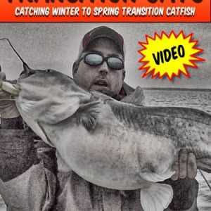 Transition Catfish Cover