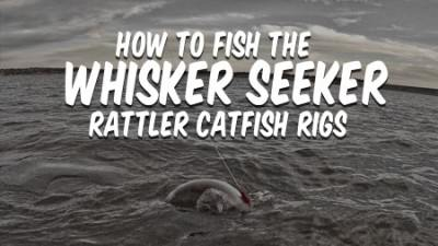 How To Fish Whisker Seeker Rattler Catfish Rigs [Plus Catfish and Sound]