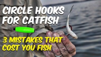 Circle Hooks For Catfish 3 Mistakes That Cost You Fish
