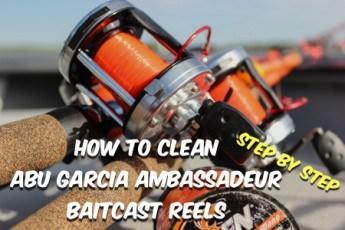 How To Clean Abu Garcia Ambassadeur Fishing Reels