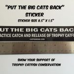 Put The Big Cats Back Sticker 800