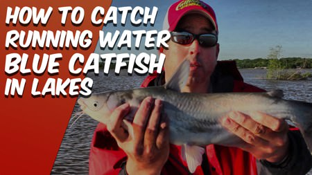 How To Catch Catfish In a Lake In Running Water (and Flooding) Conditions [Live Action]